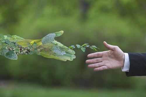 Green Deal del Governo: ecco quali sono gli sconti fiscali e cosa prevede